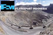 Sudirman Said Warned Freeport