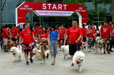 Royal Canin Gelar Dog Walk 2019 di ICE BSD