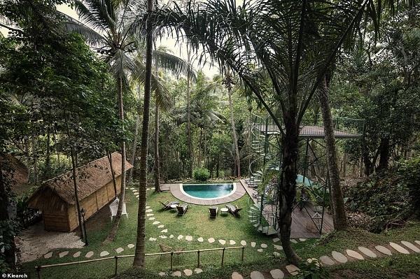 Hotel di Atas Pohon yang Eksotis Ini Ada di Ubud Bali