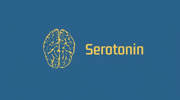 Bedanya Dopamin dan Serotonin, Dua Hormon yang Memengaruhi Kebahagiaan Kita