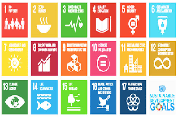 SDGs Also Can Expanding Network of Philanthropy Actor