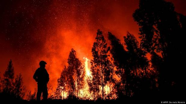 Hundreds of firefighters combat Portugal wildfires