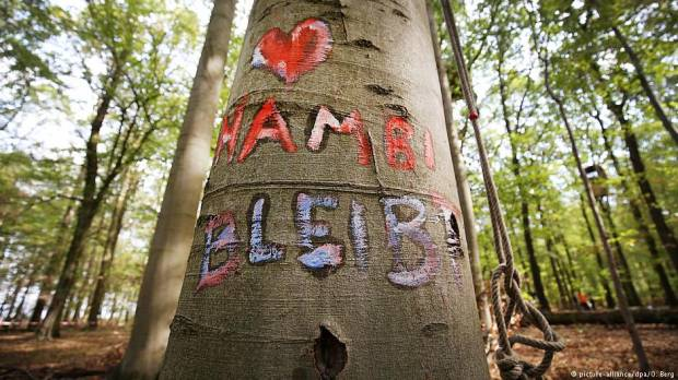 Opinion: Hambach Forest a battlefield for the planets future