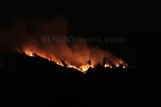 Kobaran Api Melalap Kawasan Hutan Lereng Gunung Arjuno